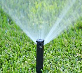 Pop up sprinkler 3